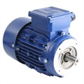 Photo of and link to Marelli - 230V Single Phase Motor 0.18kW (0.25HP) Cap Run 2P 63F Face