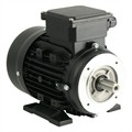 Photo of and link to TEC - 230V Single Phase Motor 0.06kW (0.08HP) Cap Run 4P 56F B34 Foot/Face