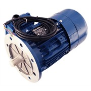 Photo of Marelli - 0.37kW (0.5HP) 230V/400V 3ph 4 Pole AC Motor for Speed Control, B5 Flange mount with 2048ppr Encoder