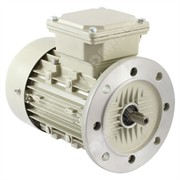 Photo of Teco - IE2 0.18kW (0.25HP) 2 Pole AC Induction Motor 230V or 400V B5 Flange Mount - 63 Frame