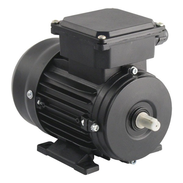Tec electric 2 pole ac induction motor 3ph for Ac and dc motor