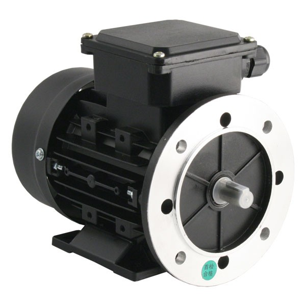Tec Electric 0 5hp 2 Pole Ac Induction Motor 3ph