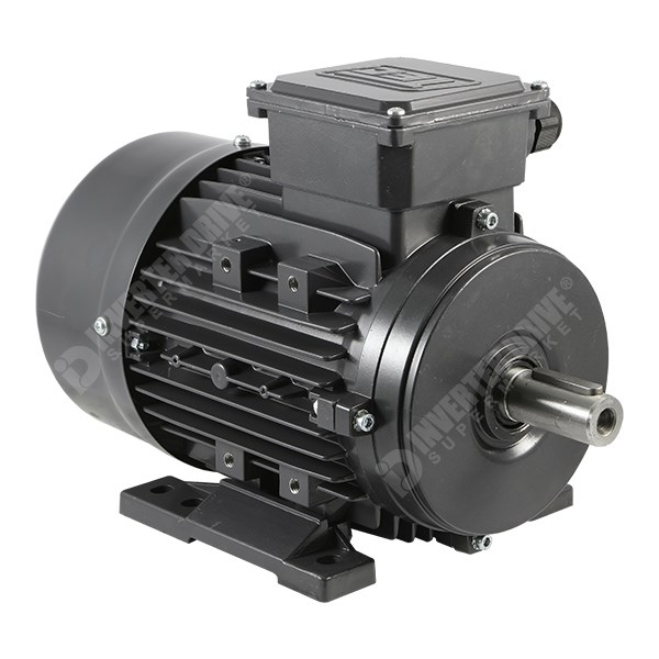 Tec Electric Ie2 2hp 2 Pole Ac Induction Motor