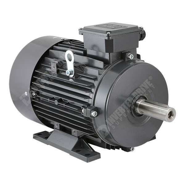 Tec electric ie2 15kw 20hp 2 pole ac induction motor for Ac and dc motor