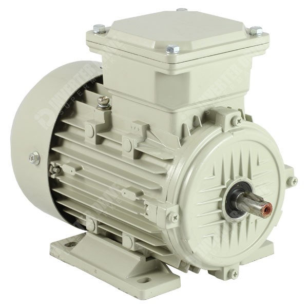 Photo of Teco - IE2 0.18kW (0.25HP) 2 Pole AC Induction Motor
