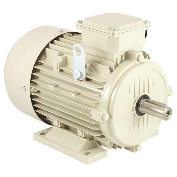 Teco Ie2 4kw 5 5hp 2 Pole Ac Induction Motor 400v B3