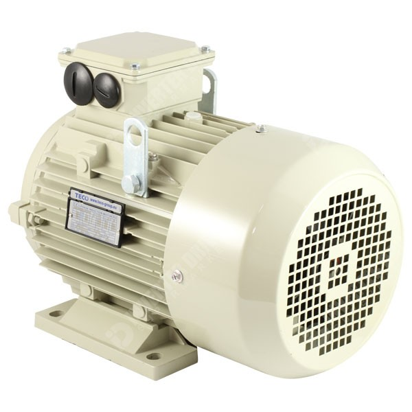 Teco ie2 4kw 5 5hp 4 pole ac induction motor 400v b3 for 3 phase 4 pole ac induction motor