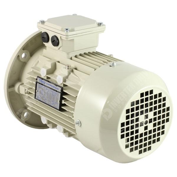 Teco ie2 4 pole ac induction motor 230v for Three phase four pole ac induction motor