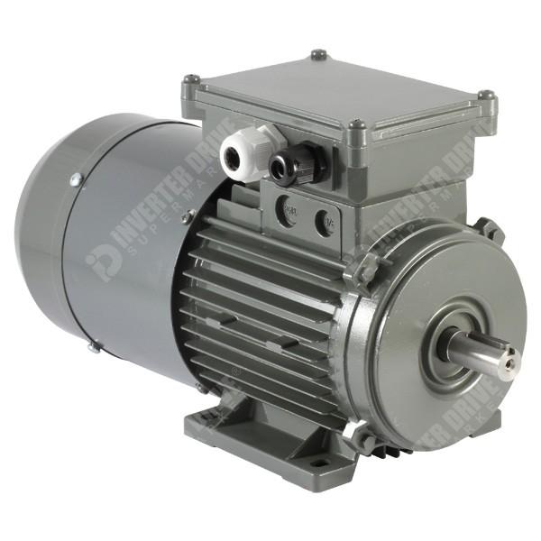 Vascat X 1420rpm 230v 400v 3ph Ac Vector Motor B3