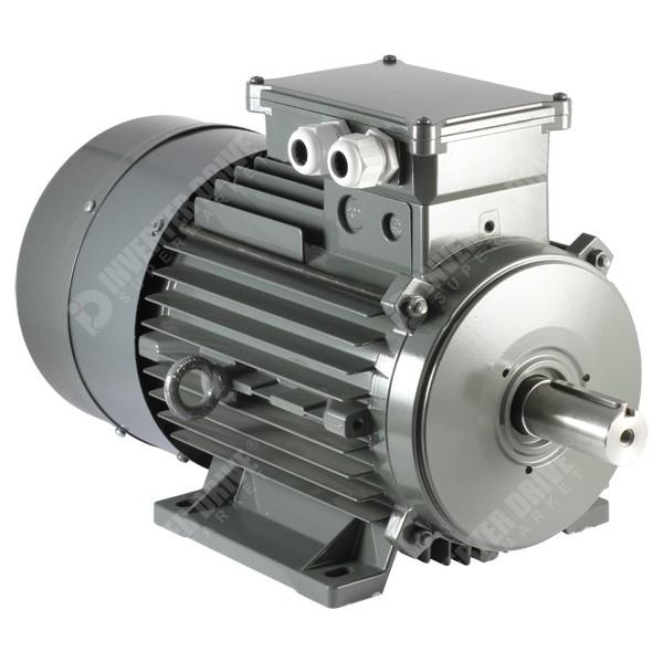 Vascat 13kw X 2500rpm 400v X 87hz 3ph Ac Vector Motor B3